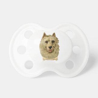 ポメラニア犬犬の美しい顔のポートレート おしゃぶり