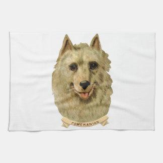 ポメラニア犬犬の美しい顔のポートレート キッチンタオル
