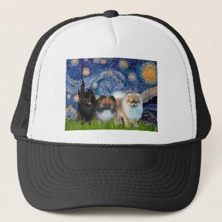 ポメラニア犬(3)の-星明かりの夜 キャップ