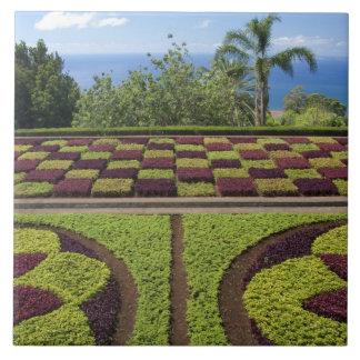 ポルトガルのマデイラの島、フンシャル。 植物 タイル
