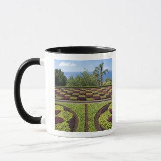 ポルトガルのマデイラの島、フンシャル。 植物 マグカップ