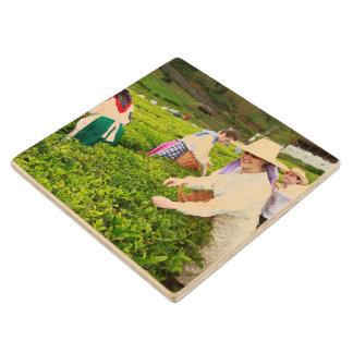 ポルトFormosoの茶庭 ウッドコースター