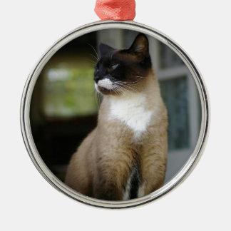 ポーチのシャム猫 メタルオーナメント