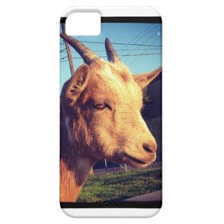 ポートランドBelmontヤギの写真のIphoneの場合 iPhone SE/5/5s ケース