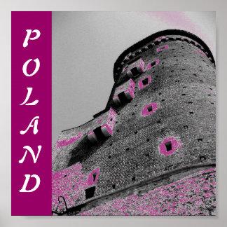 ポーランドの城 ポスター