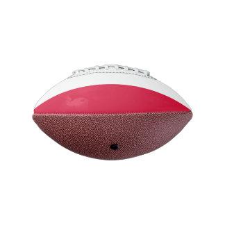 ポーランドの小型フットボールの旗 アメリカンフットボール
