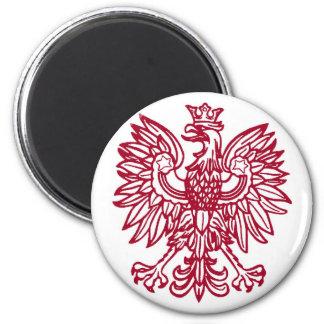 ポーランドの磁石 マグネット