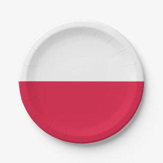 ポーランドの紙皿の旗 ペーパープレート