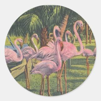 マイアミ、フロリダのフラミンゴ ラウンドシール