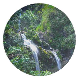 マウイハワイの滝 プレート