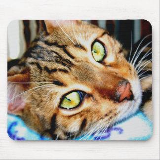 マウスパッドのベンガル猫 マウスパッド