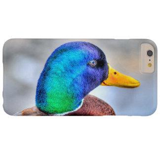 マガモのアヒルのドレークの野性生物のポートレート BARELY THERE iPhone 6 PLUS ケース