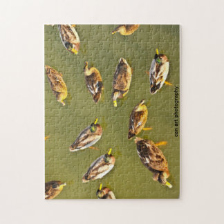 マガモのアヒルのパズル ジグソーパズル