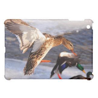 マガモのアヒルの入って来るiPadのケース iPad Miniケース