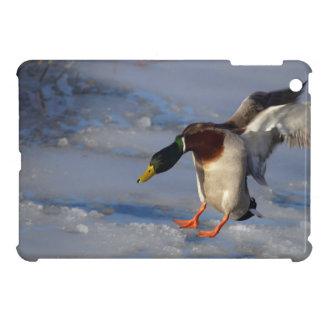 マガモのアヒルの野性生物の写真のiPad Miniケース iPad Mini Case