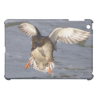 マガモのアヒルのSpeckのケース iPad Miniカバー