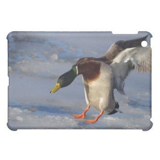 マガモのアヒルのSpeckのケース iPad Miniケース