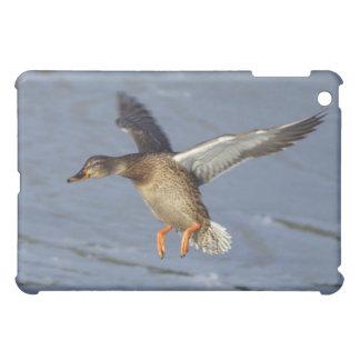 マガモのアヒルのSpeckのケース iPad Mini カバー