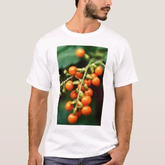 マクロ極端: Tシャツ