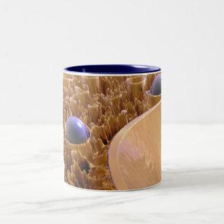 マクロ胞子 ツートーンマグカップ