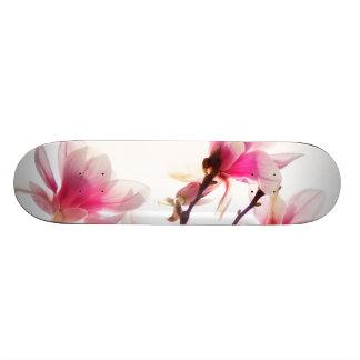 マグノリアの咲くscateboard スケートボード