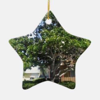マグノリアの木の陶磁器の星のオーナメント セラミックオーナメント