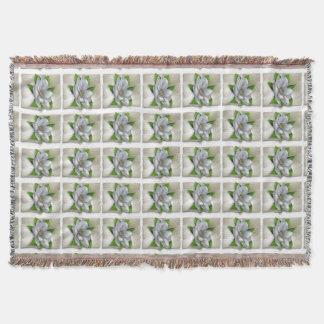 マグノリアの花 スローブランケット