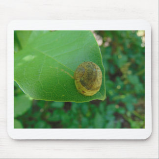 マグノリアの葉のかたつむり マウスパッド