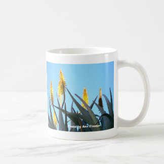 マグ/サボテンの花 コーヒーマグカップ