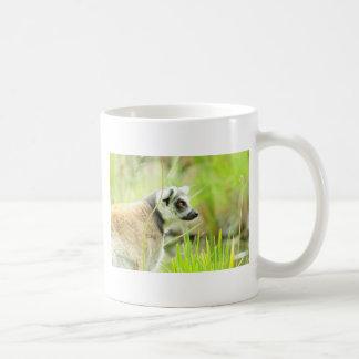 マグ-後につかれるLemurのリング コーヒーマグカップ