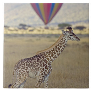 マサイ族のキリン(Giraffaのcamelopardalis タイル