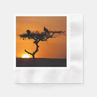 マサイ族マラ、ケニヤの日の出 縁ありカクテルナプキン
