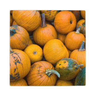 マサチューセッツ、ソールズベリーのカボチャ、秋 ウッドコースター