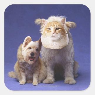 マスクを持つ猫そして犬 スクエアシール