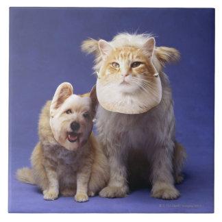 マスクを持つ猫そして犬 タイル