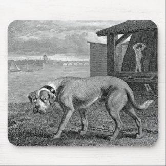 マスティフ犬のヴィンテージの絵 マウスパッド