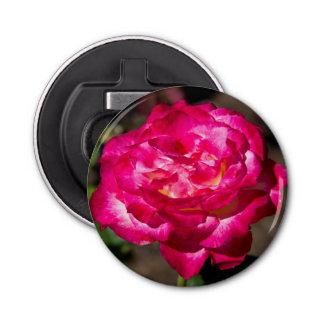 マゼンタのピンクおよび白いバラ 栓抜き