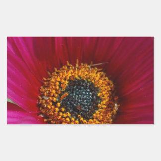 マゼンタの花 長方形シール