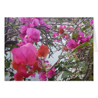 マゼンタの葉が付いているロマンチックな郵便はがき カード