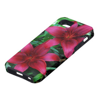 マゼンタユリの組 iPhone 5 CASE