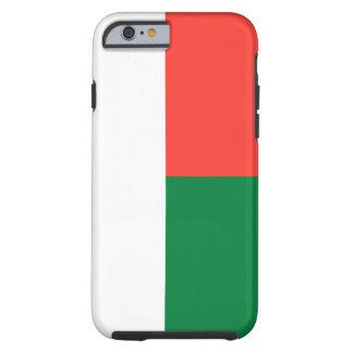 マダガスカルの国民の世界の旗 ケース