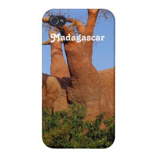 マダガスカルの木 iPhone 4/4S ケース