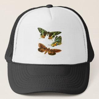 マダガスカルの蝶 キャップ