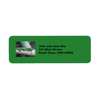 マダガスカル巨大な日のヤモリの緑の宛名ラベル ラベル