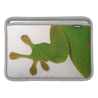 マダガスカル日のヤモリ(Phelsumaのmadagascariensis 2 MacBook スリーブ