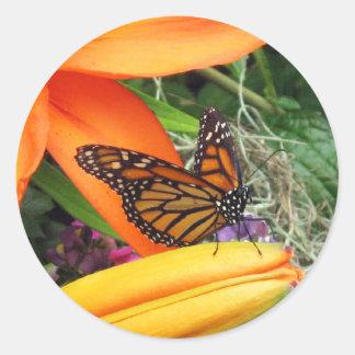 マダラチョウのオレンジのステッカー ラウンドシール