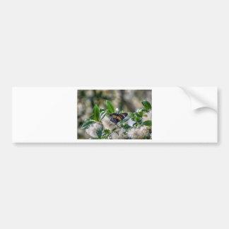 マダラチョウのオーストラリアの芸術の効果 バンパーステッカー
