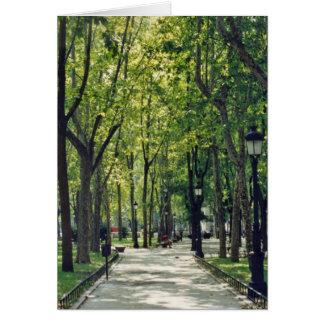 マドリード公園 カード