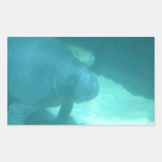 マナティー|浮遊|海|床 長方形シール・ステッカー