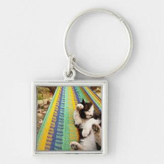 マヤのメキシコハンモックにあっている猫 キーホルダー